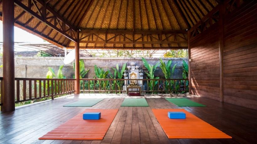 yoga-dhyana2.jpg